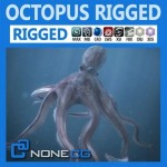 Rigged-Octopus.jpg