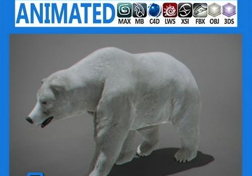 Polar-Bear-Animated.jpg