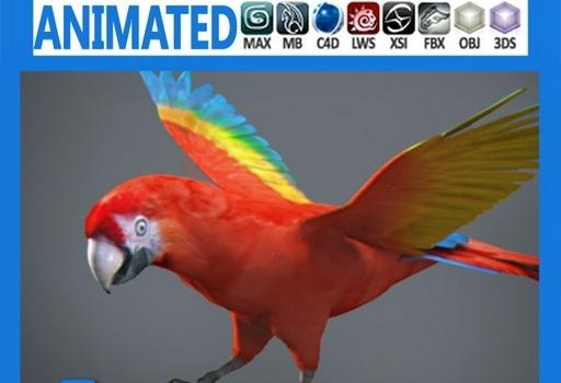 Animated-Red-Parrot.jpg