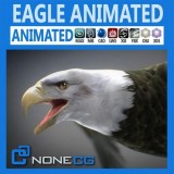 Animated-Eagle-Bald.jpg