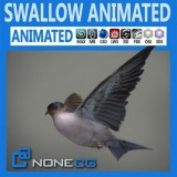 Animated-Swallow.jpg
