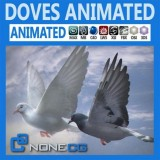 Animated-Doves.jpg